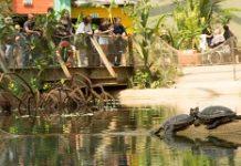 burgers-zoo-aanbieding